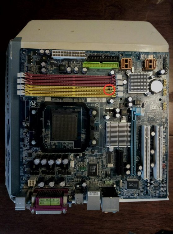 p3Rhd9P-3Xs.jpg